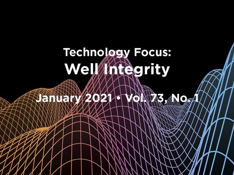Well Integrity Focus Lead