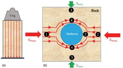 Fig. 1—(a) Stress streamlines (red lines) in a core; (b) cross section of a borehole in a stress field consisting of Shmin and SHmax.