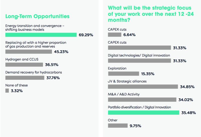 Energy Council 2021 Future Outlook Survey Report