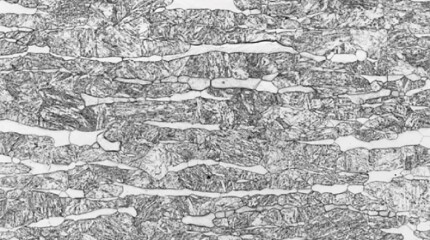 Microstructures of the tested steel