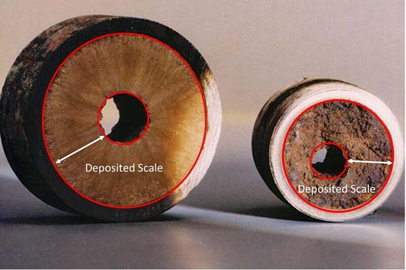 scale-fig1.jpg