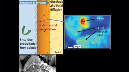 Imbibition and diffusion graph